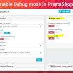 Enable Debug mode in PrestaShop 1.7.x.