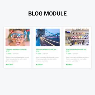 Leo Blog Module